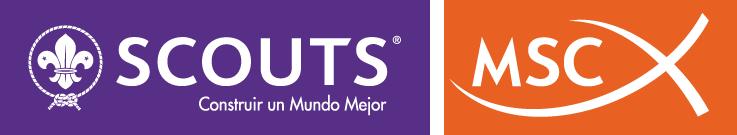 logo-scouts-msc